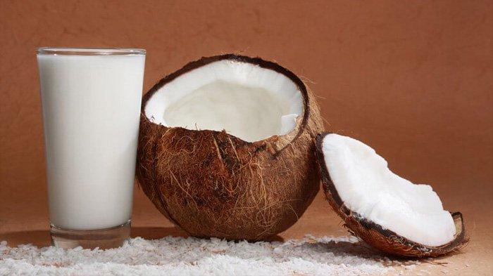 Baru Tahu, Ternyata Minum Santan Ampuh Menurunkan Kadar Kolesterol Jahat di Dalam Tubuh, Sudah Coba?