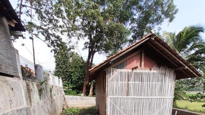 Warga Cidempet Sumedang Menderita, Sawah dan Kolam Mengering Terdampak Proyek Tol Cisumdawu