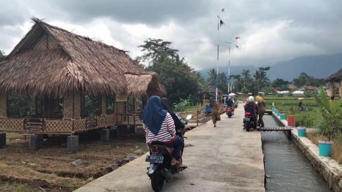 Lagi Hits di Kuningan, Suasana Sawah Lope di Desa Cikaso Banyak Dikunjungi Warga