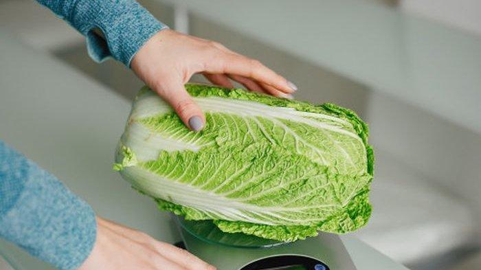 4 Manfaat Sayuran Sawi Putih Bagi Kesehatan Tubuh, Cocok Buat Penderita Ginjal dan yang Mau Diet
