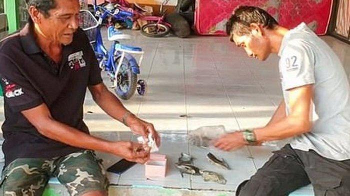Seorang Nelayan Mendadak Kaya Raya Setelah Menemukan Mutiara Langka di dalam Cangkang Siput