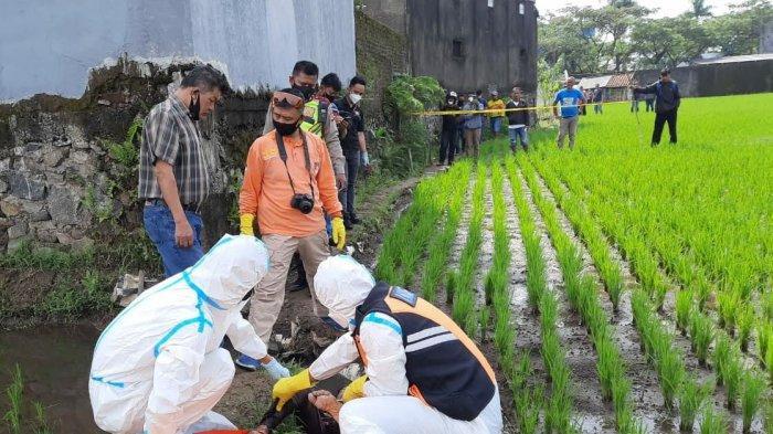 Seorang Perempuan Ditemukan Tewas di Tepi Sawah di Kota Tasikmalaya, Diduga karena Ini