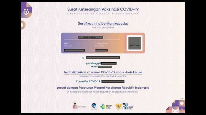 Nih Cara Download Sertifikat Vaksin di PeduliLindungi.id atau Link SMS 1199, Kini Jadi Dokumen Wajib
