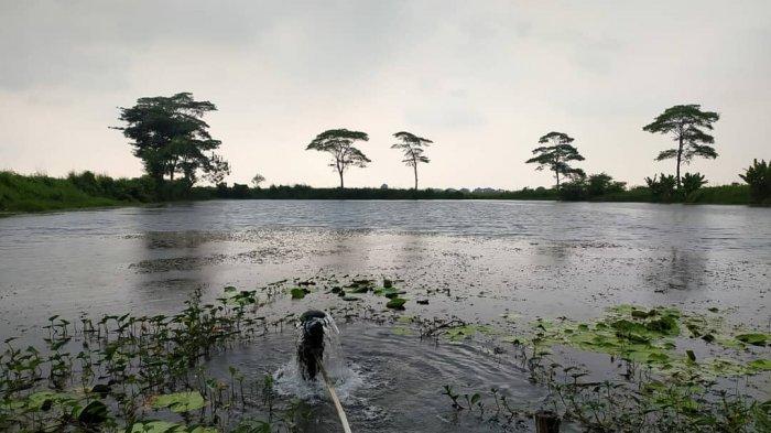 Bukan Daerah Pegunungan, Indramayu Punya Sumber Mata Air Alami, Jernih dan Segar Saat Diminum