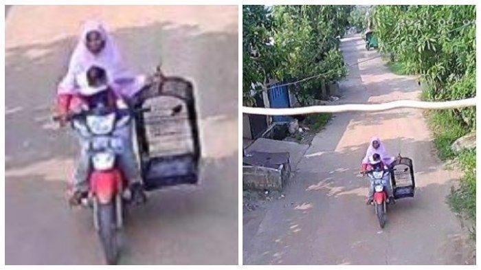 Seorang Ibu Sambil Gendong Anak Ketahuan Nyolong Burung Murai Batu Milik Polisi, Aksi Terekam CCTV
