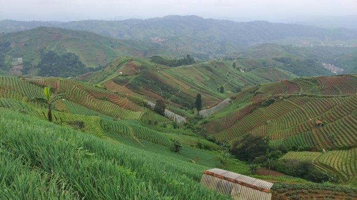 Desa Nanggerang Majalengka Dapat Bantuan Rp 1 Miliar untuk Program Livelihood KOTAKU dari Pemerintah