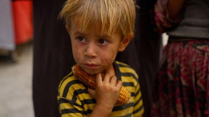 Kisah Pilu Masyarakat Afghanistan Melawan Kelaparan di Bawah Pemerintahan Taliban
