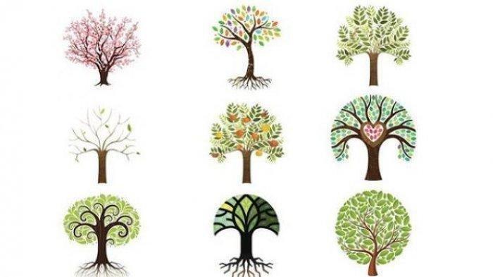 TES KEPRIBADIAN: Pilih Gambar Pohon Keren Ini, Cek Karaktermu, Apakah Kreatif, Sabar Atau Romantis