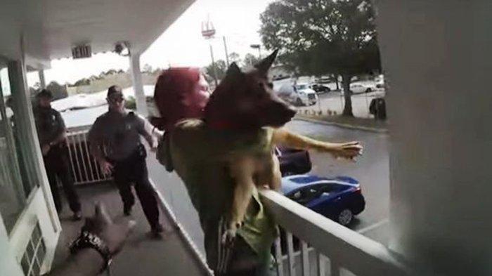 Wanita Ini Lempar Anjingnya dari Lantai 2, Polisi Terlambat Satu Detik, Begini Nasib Si Peliharaan