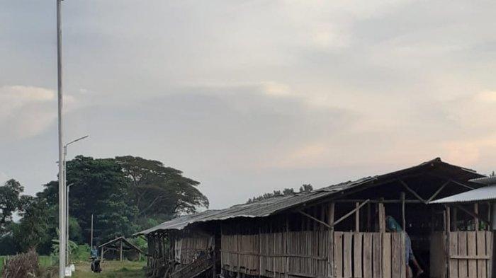 Atasi Masalah Minim Penerangan Kecamatan Juntinyuat Indramayu Akhirnya akan Dipasang Seribu PJU