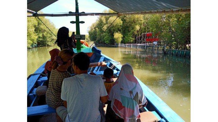 Yuk Wisata Sambil Belajar Kenali Tanaman Mangrove di Ekowisata Hutan Mangrove Karangsong Indramayu