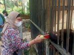 bupati-indramayu-nina-agustia-kunjungi-fauna-indonesia.jpg
