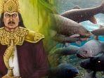ikan-dewa-prajurit-prabu-siliwangi-kuningan-cibulan.jpg