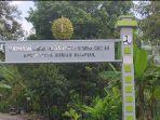kawasan-agrowisata-durian2.jpg
