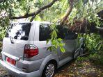 mobil-dinas-tertimpa-pohon-tumbang.jpg