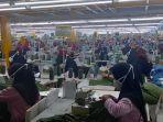 para-buruh-yang-masih-bekerja-di-salah-satu-pabrik-di-kecamatan-sumberjaya-majalengka.jpg