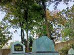 pohon-nagasari-yang-tumbuh-di-areal-kompleks-makam-syekh-alimuddin1.jpg