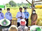 presiden-jokowi-saat-menyapa-petani-indramayu.jpg