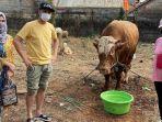 raffi-ahmad-kurban-17-ekor-sapi-dan-kambing.jpg