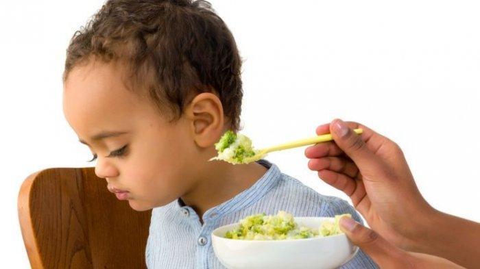 ilustrasi anak susah untuk makan