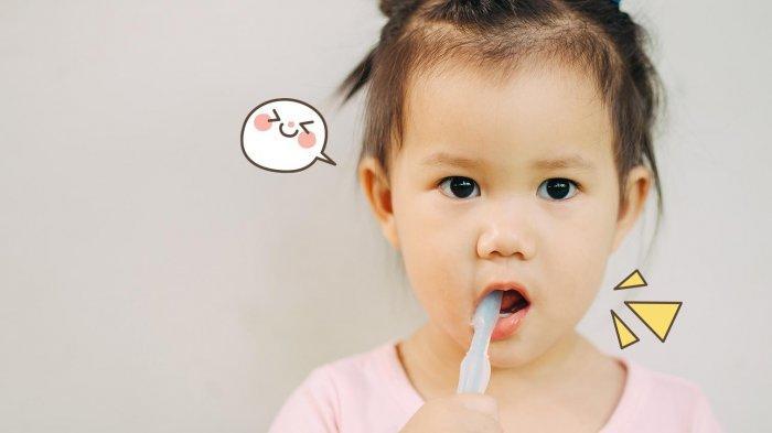 Tahapan Belajar Menyikat Gigi Pada Balita Tidak Memerlukan Waktu 3-5 Menit