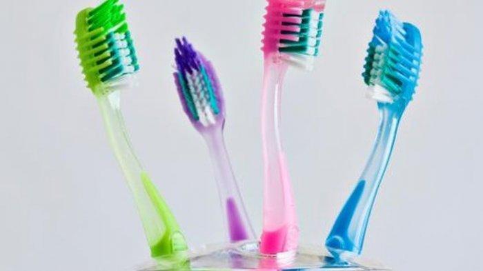 Kesehatan Gigi dan Mulut yang Optimal, Berawal dari Pemilihan Sikat Gigi yang Tepat