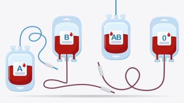 dr. Lugyanti Jelaskan Cara Tingkatkan Kualitas Darah, Harus Disesuaikan dengan Penyakit Penyerta