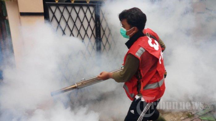 Jelang Musim Hujan, dr. Tan Shot Yen Ingatkan soal Demam Berdarah, Fogging Bukan Solusi Terbaik