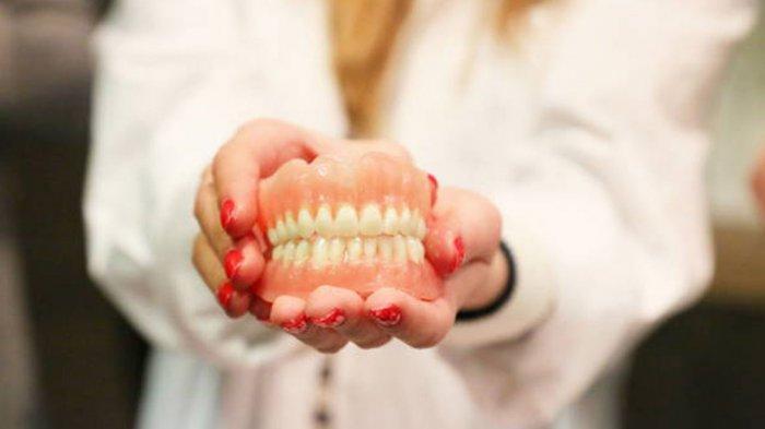 Ilustrasi struktur gigi yang ideal, menurut drg. R. Ngt. Anastasia Ririen