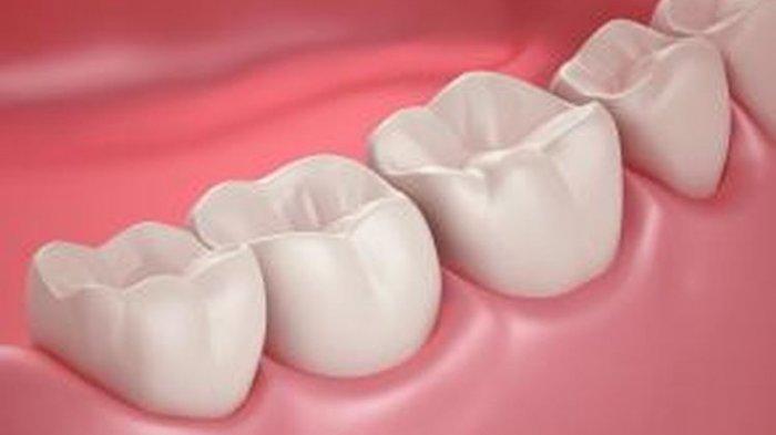ilustrasi gigi bersih dan sehat
