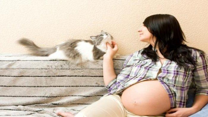 ilustrasi ibu hamil yang memelihara kucing
