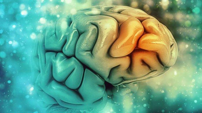 Ilustrasi demensia alzheimer menyerang otak
