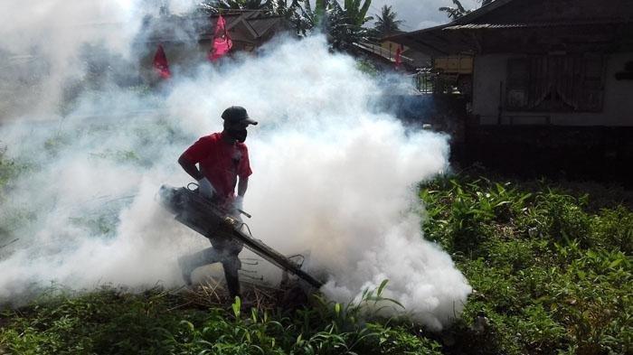 Ilustrasi fogging yang tidak efektif basmi nyamuk demam berdarah