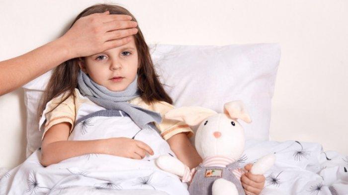 Ilustrasi gejala yang timbul akibat bakteri salmonella typhi
