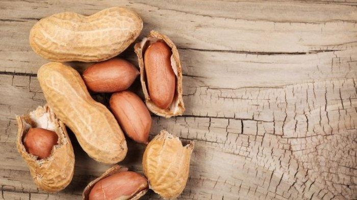 Ilustrasi kacang tanah yang dapat memicu penyumbatan pori-pori kulit