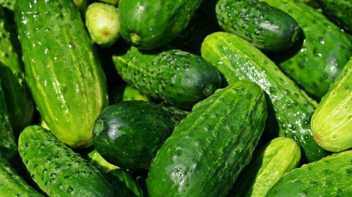 Benarkah Makan Timun, Pare, dan Seledri Bisa Turunkan Hipertensi?