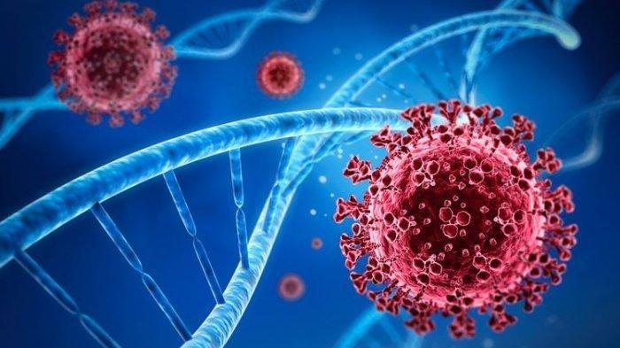 Ilustrasi mutasi virus corona yang harus diwaspadai