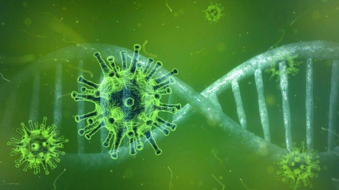 Virus Corona Bermutasi Lagi, Lahirkan Varian Baru C.1.2 yang Masih Dipantau Peneliti