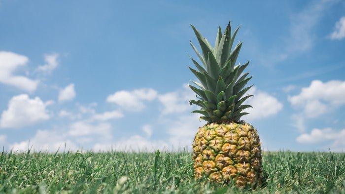 Ilustrasi nanas untuk kesehatan
