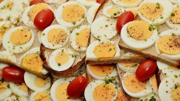 Ilustrasi olahan telur