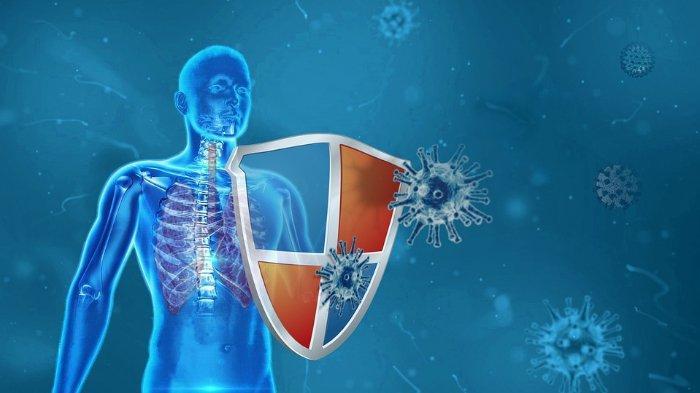 Simak, Dokter Jelaskan Proses Perjalanan Penyakit Paru-paru akibat Gangguan Sistem Pertahanan Tubuh