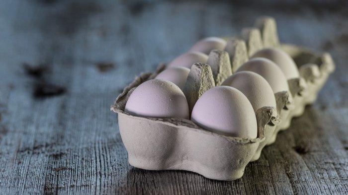 dr. Tan Shot Yen Bicara soal Kolesterol dalam Telur, Tetap Aman Dikonsumsi Rutin?
