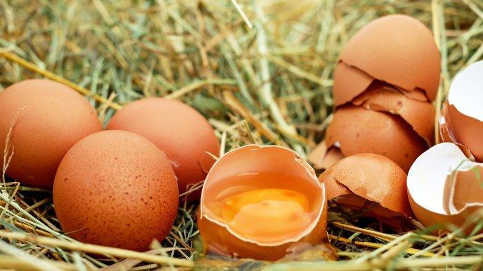 dr. Tan Shot Yen Ingatkan Bahaya yang Mengintai di Balik Kebiasaan Makan Telur Mentah