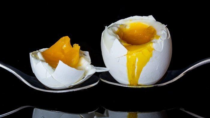 dr. Tan Shot Yen Jelaskan Manfaat Telur, Bisa Cegah Stunting jika Dikonsumsi Sejak MPASI