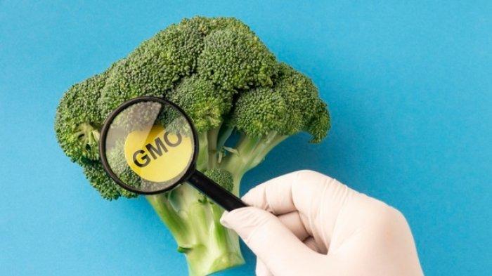 dr. Tan Shot Yen Jelaskan Mengonsumsi Makanan GMO dapat Membahayakan Kesehatan