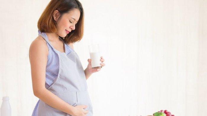 ilustrasi makanan yang dikonsumsi ibu hamil