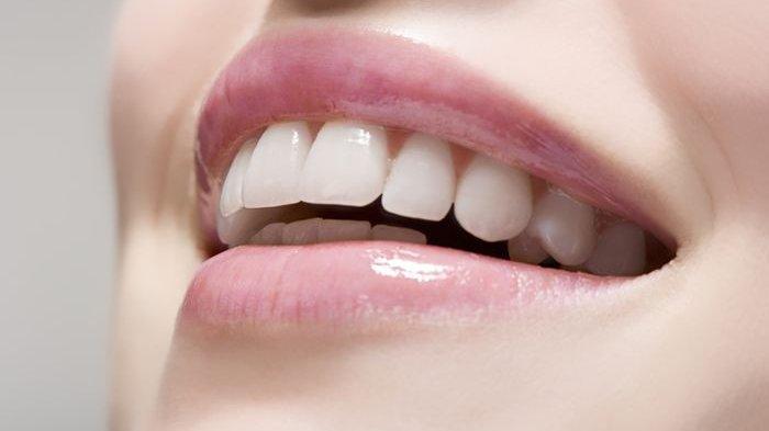 ilustrasi permukaan gigi yang sehat