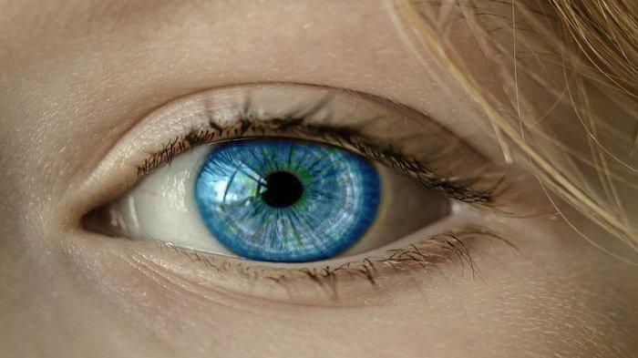 ilustrasi retinoblastoma