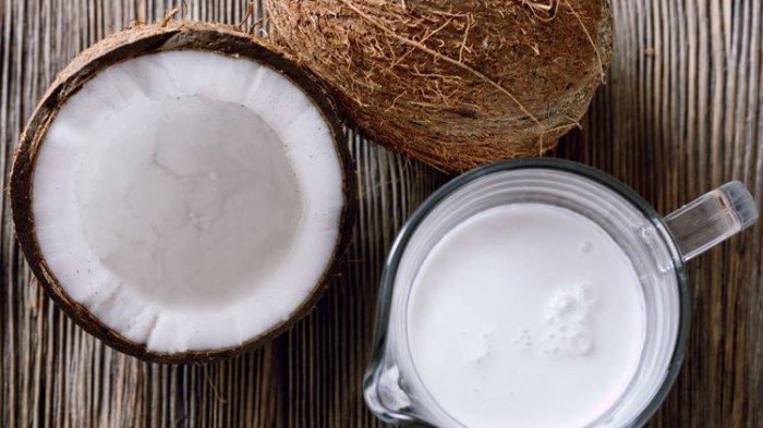ilustrasi santan kelapa