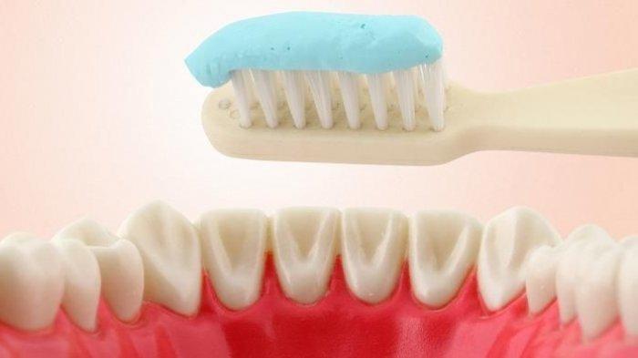 Ilustrasi teknik menyikat gigi
